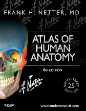 "ok�adka ksi��ki: ""Atlas of Human Anatomy, 6th Edition"""